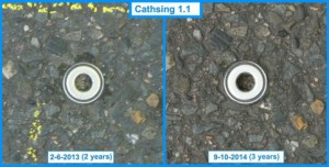 Cathsing 1.1