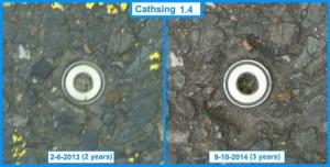 Cathsing 1.4