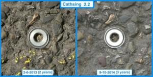 Cathsing 2.2