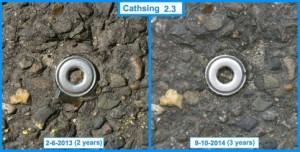 Cathsing 2.3